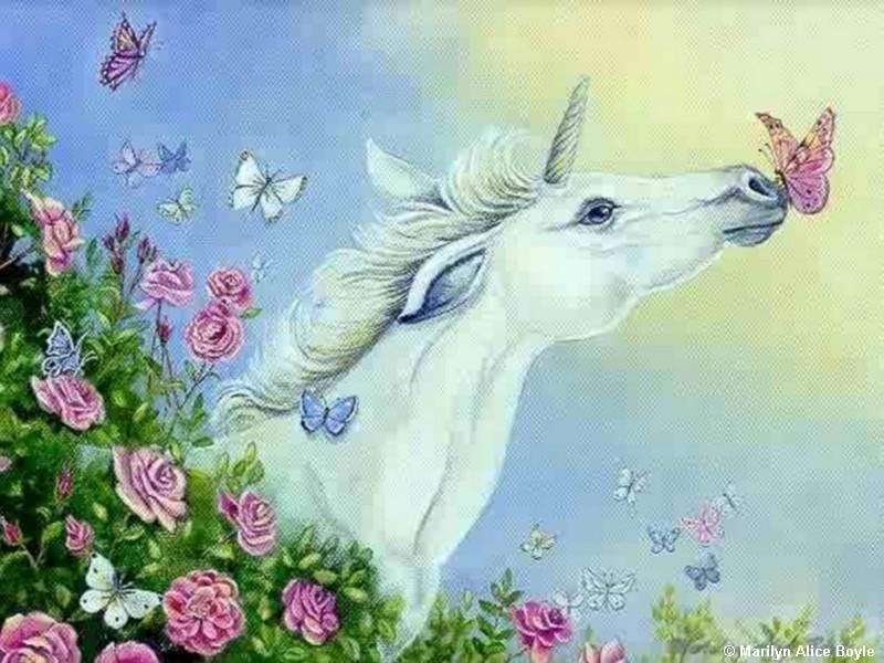 http://3.bp.blogspot.com/_dQfIrNCuZhA/TU0gzT7OSoI/AAAAAAAAAXw/vOHEwavh05s/s1600/butterfly_kisses.jpg