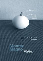 Montez Magno, com textos de Clarissa Diniz (org.), Paulo Herkenhoff e Luiz Carlos Monteiro