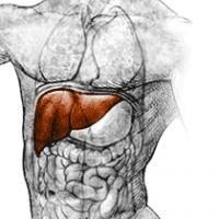 Remedii naturiste pentru ficat