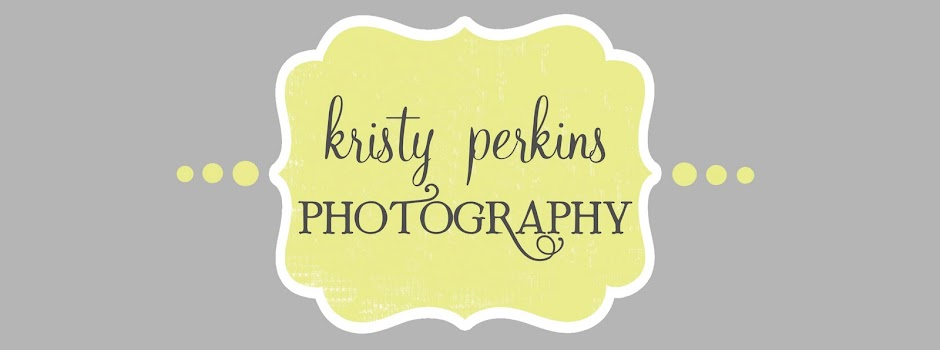 Kristy Perkins Photography
