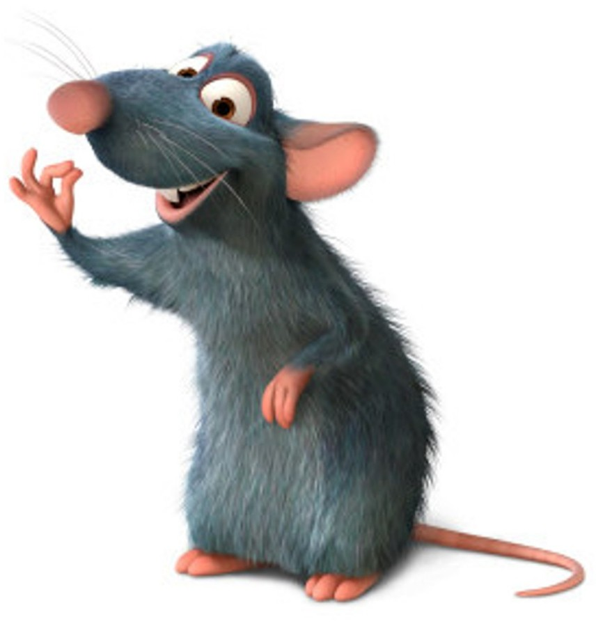3 rats script Don't feed the rat  when you buy a script or video from us you can show it at any event you like, as long as you're not charging admission to your event.