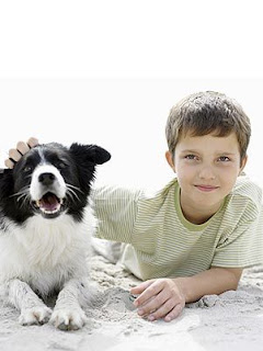 Estudo revela que o animal treinado pode ajudar crianças que possuem transtornos de desenvolvimento