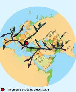 migration+romtb.jpg