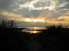 Tawas Bay (MI) State Park