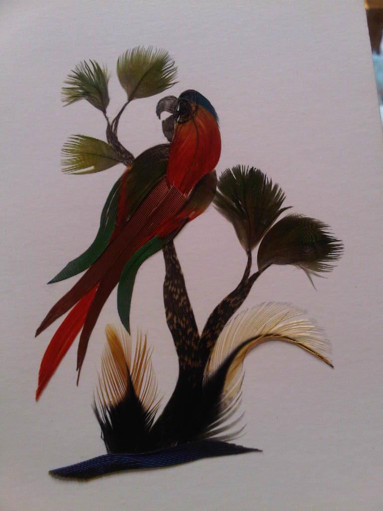Alas al viento tarjeta hecha con plumas de ave for Manualidades con plumas