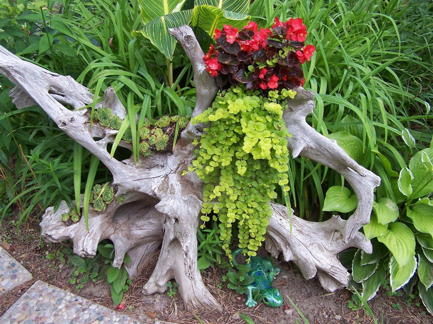 Perennial passion driftwood redo Driftwood sculptures for garden