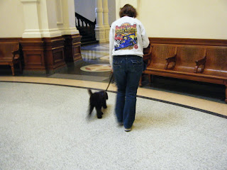 Alfie guides me to a bench in the Capitol rotunda area