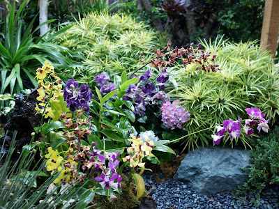 modern garden with beautiful flowers