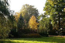 De Eik garden in autumn