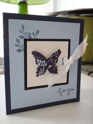 Bashful Butterfly