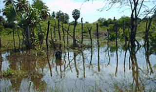 La crecida de lago Azuei causa 48 casos malaria en Jimaní