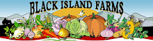 Black Island Farms