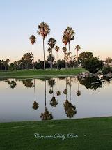 Coronado Daily Reflection