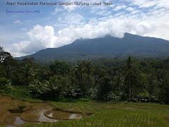 Alam Raya Hutan Marancar