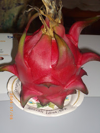 Buah Dragon