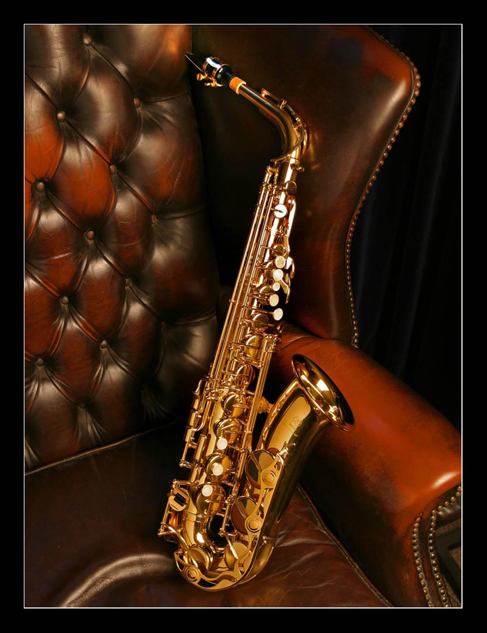 Resultado de imagem para só o saxofone