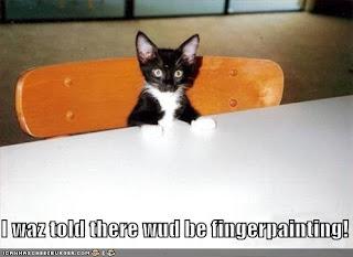 funny cat-2