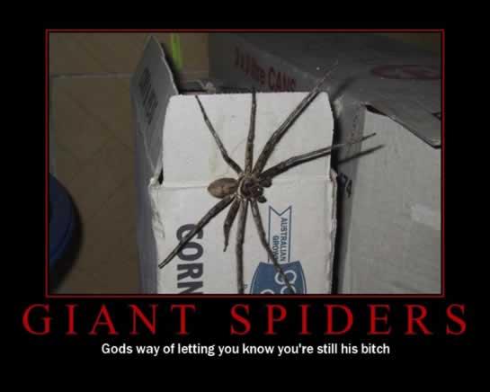 funny motivational pics. Funny Motivational Pictures:
