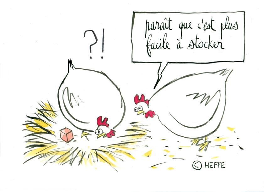 ☺Rions un Peu ☺!!!!! - Page 2 Poule+et+oeuf+bizarre0001+Final