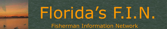 Florida fishing guides, fishing reports, saltwater boat ramp maps