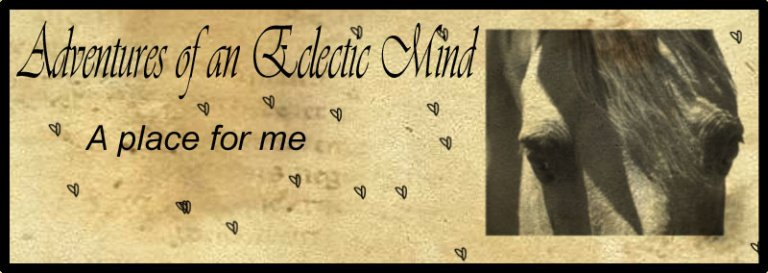 Adventures of an Eclectic Mind