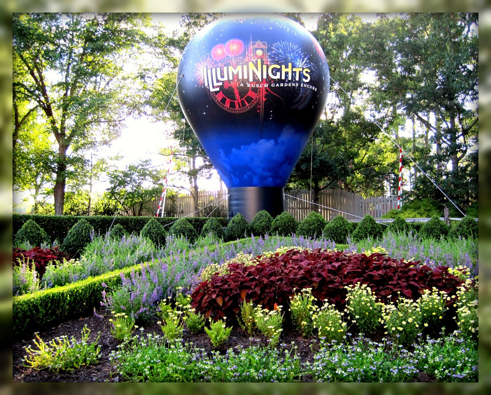 Living In Williamsburg Virginia Illuminights At Busch