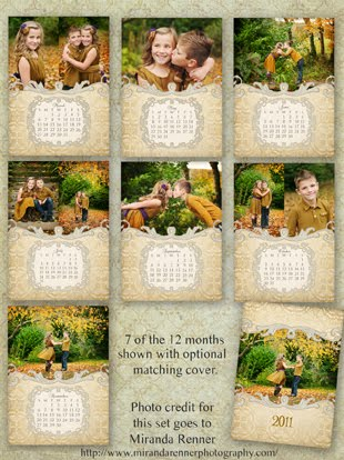 editable calendar 2011. One frame and 2 blank calendar