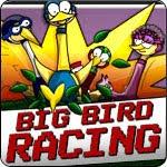 Big Bird Racing Game