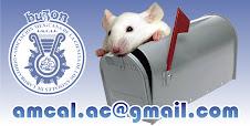 Escribenos al correo de AMCAL
