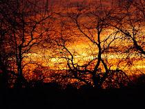 Kansas Sunset