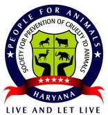 Naresh Kadyan needs  volunteer for animal rights