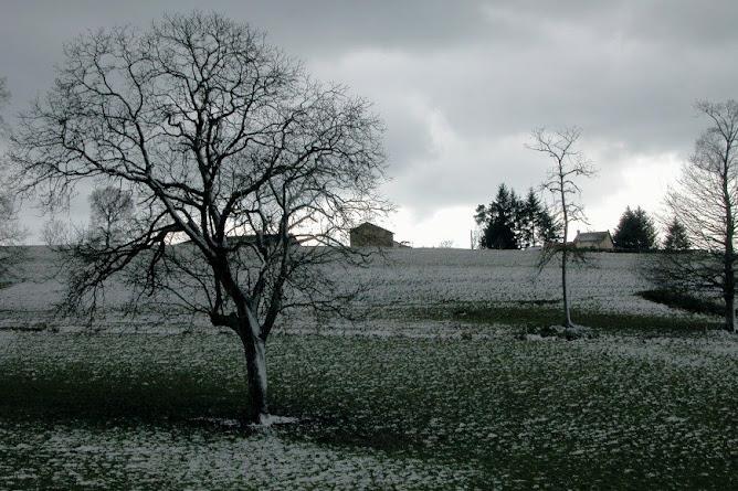 Temps de saison