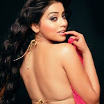 Shriya South Beauty Queen