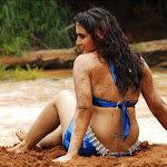 Gallery Of Indian Actresses