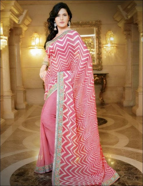 Zarine Khan Glorious Saree