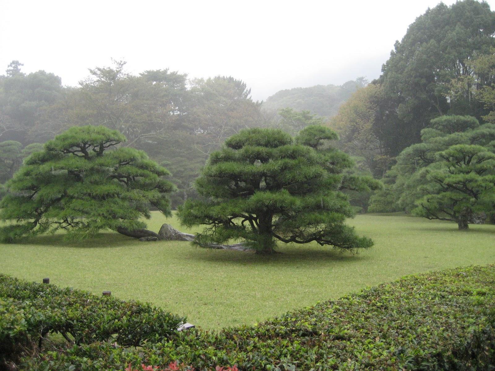 Mie Japan  City pictures : mochimochi sembei: Ise Jingu Mie Prefecture, Japan