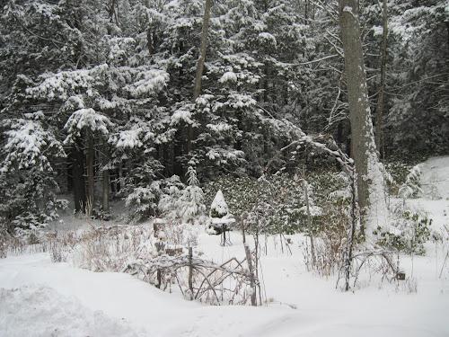 Foto Salju terindah