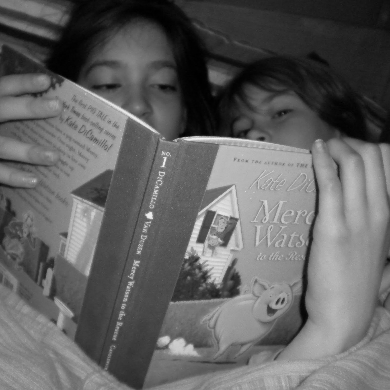 There is an art to the Bedtime Story. If you are a parent reading to your ...