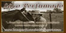 Blog Laço Perfumado