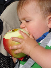 Washington Apples are DELICIOUS!