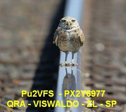 PU2VFS-PX2Y6977- Viswaldo