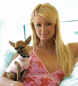 Paris Hilton's Dog is Dating