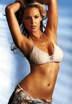 katherine heigl nipples   hot girls wallpaper