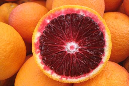 Las Aventuras: The Moro Blood Orange | 432 x 288 jpeg 65kB
