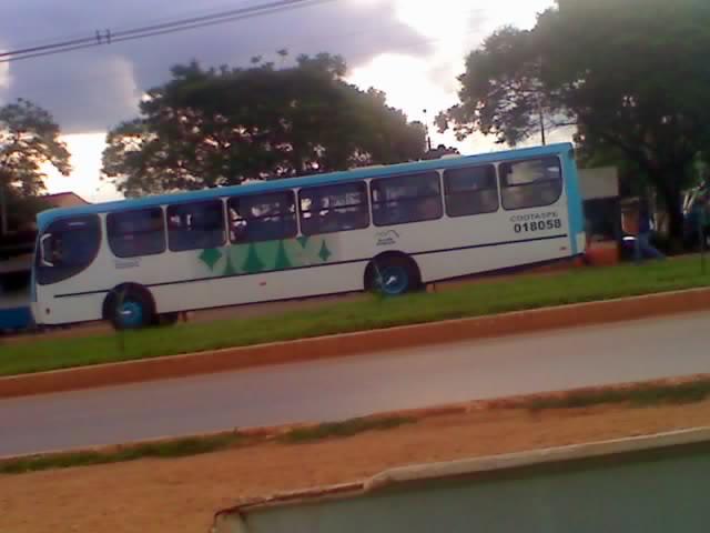 Mostre os ônibus de sua cidade Cootransp