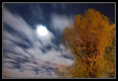 Running Moon