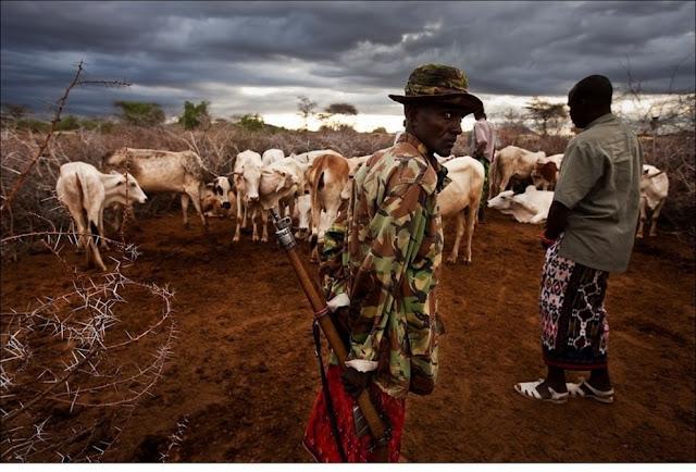 الحياة في إفريقيا - عالية الدقة - 5