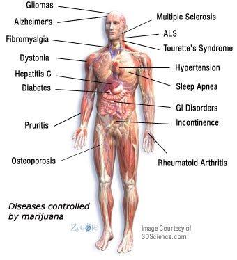 Cannabis, informate