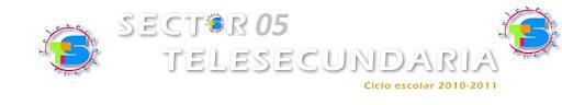 SECTOR 05 TELESECUNDARIA