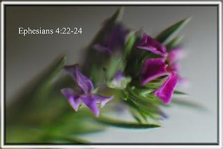 bible study on ephesians chapter 6